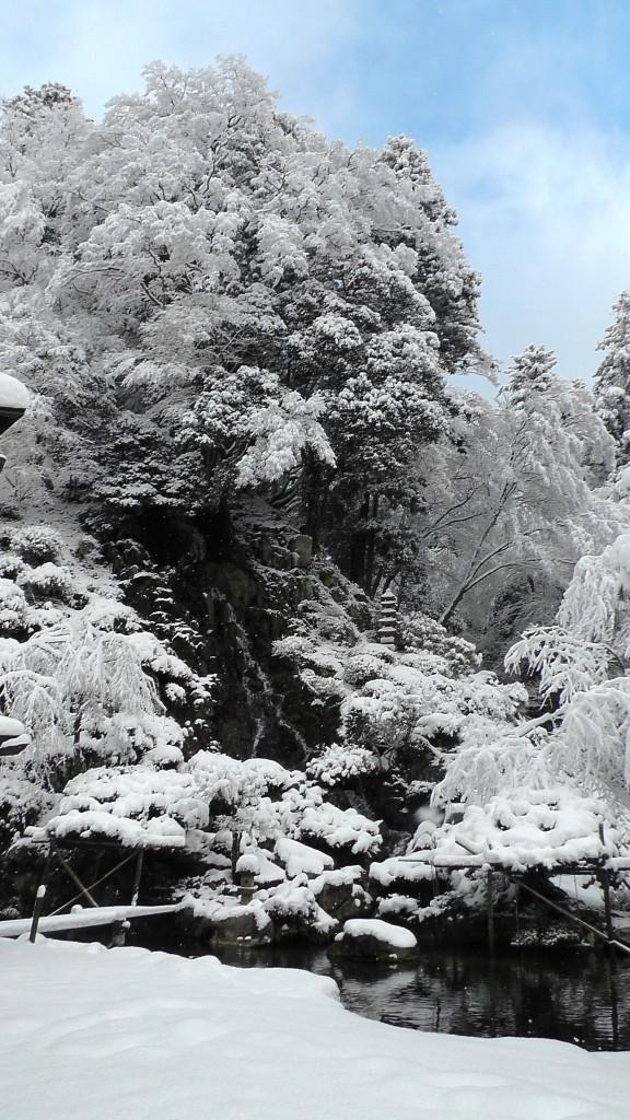 櫻井氏庭園 瀑布